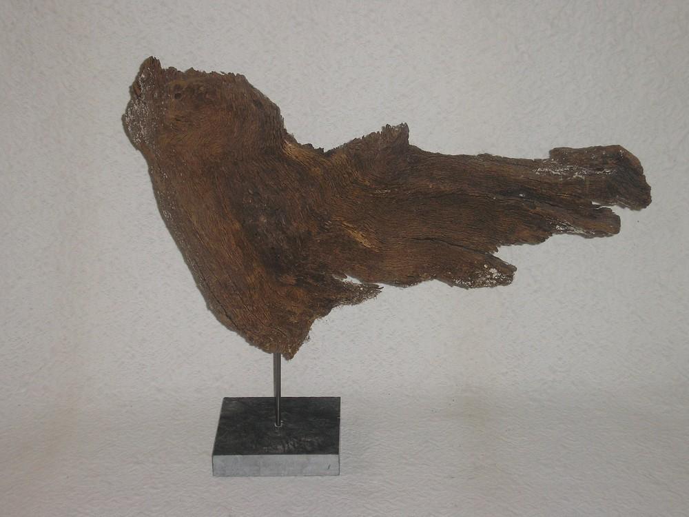 chêne, 2008