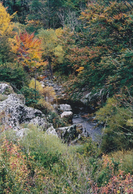 Aveyron, 2001