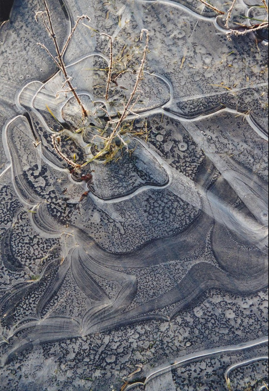 Oise, 1995