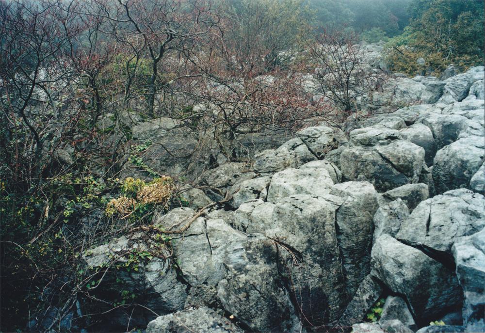 Hérault, 1996